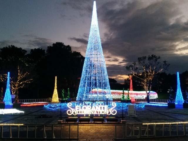 宮崎の冬の夜を美しく温かく彩る光のイベント